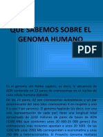 QUE_SABEMOS_SOBRE_EL_GENOMA_HUMANO.pptx