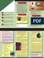 GdeConflito_06.pdf