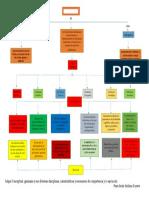 mapa conceptual que es gimnasia y sus diversas disciplinas