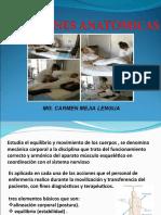 POSICIONES ANATOMICAS (2)