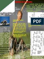 Bioquimica de Cordicepina