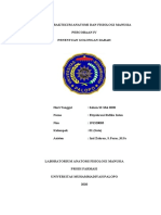 REVISI 2-JURNAL PRAKTIKUM ANATOMI DAN FISIOLOGI MANUSIA- Penentuan golongan darah.docx