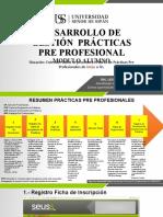 Desarrollo de gestion PRÁCTICAS PRE PROFESIONAL ALUMNO.pptx