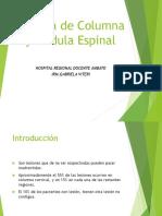 traumadecolumnaymedulaespinal-160111205501.pdf