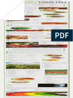 Paleo-Diet-Food-List-Infographic.pdf
