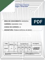 PROGRAMA ANALITICO TRABAJO DE GRADO-ING