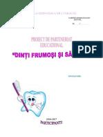 3 Proiect de Parteneriat Educational