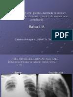 afectiuni_pleuro_pulmonare-13706.pdf
