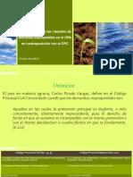 Régimen legal de las causales de demanda improponible..pptx