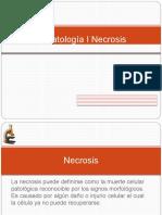 Patologías Necrosis.pptx