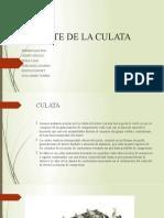 PARTE DE LA CULATA