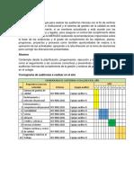 programa y plan de auditoia