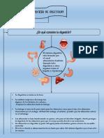 PROCESO DIGESTIVO ALE.pdf