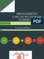 Procesamiento tubular del filtrado glomerular.ppt