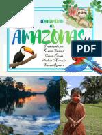 AMAZONAS 1b