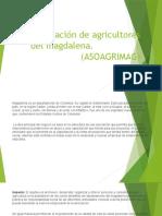 Asociación de agricultores del magdalena
