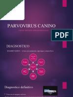 PARVOVIRUS%20CANINO.ppt_0