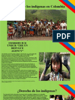 SITUACION DE LOS INDIGENAS EN COLOMBIA