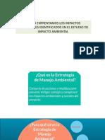 MANEJO AMBIENTAL DE IMPACTOS