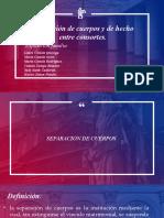 Familia separación de cuerpo y de hecho 1.pptx