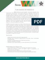oportunidades_negocio.pdf