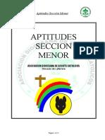 Aptitudes Sección Menor.doc