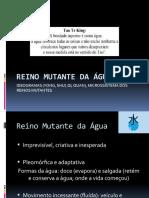 REINO MUTANTE DA ÁGUA SHUI, NATUREZA DA ÁGUA (2)