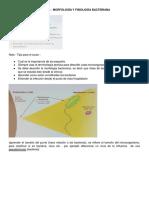 1. Morfología y fisiología bacterianas - MA.pdf