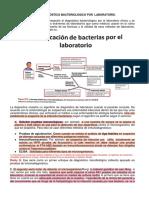 6.Diagnóstico Bacteriológico por el Laboratorio.pdf