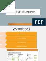Econoimia COlombiana