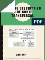 DIAPO ESTUDIOS DESC.-TRANSV.