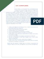 CASOS DE APLICACION LEGAL-SSO