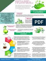 Infografía - Gestión Ambiental