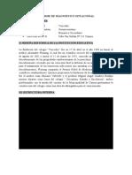 INFORME DE DIAGNÓSTICO SITUACIONAL