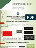 3. Convención en Diversidad Biologica