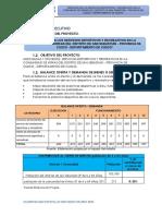 RESUMEN EJECUTIVO KIRKAS.pdf