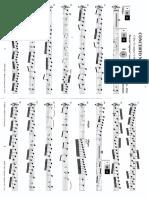 dowani baston pour flûte à bec