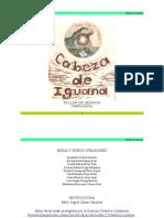 Carpeta-Cabeza-de-Iguana