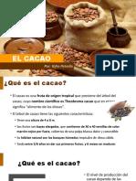 El Cacao v2 (2)