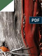 biodiversidad_1_uno-32-47_eckart_boege.pdf