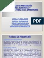 Solano, K., de Moya, L., Robles, Y., y Zabaleta, S. (2011). Niveles de prevención. Tríada ecológica y historia natural de la enfermedad.