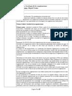 Sociologia de Las Organizaciones - 29 Agosto