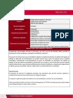Proyecto Proceso Estrategico (2)