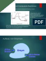 pdfZusammenfassung