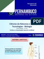 A linfa e a imunização natural e artificial.ppt