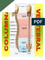 dolor lumbar (2)