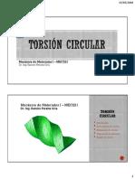 Torsion Circular