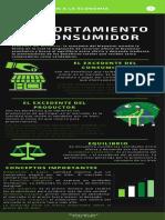 Infografía El Comportamiento Del Consumidor Vicky Rubio