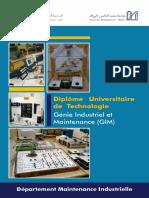 DUT-GIM.pdf