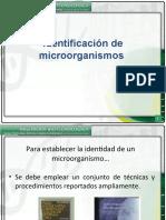 PRESENTACION 6_PRUEBAS BIOQUIMICAS
